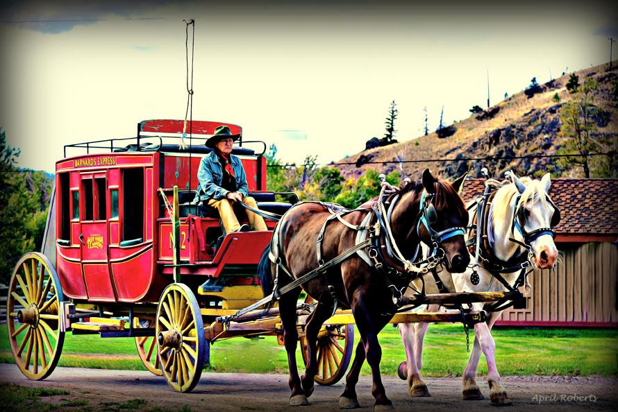 horse n buggy copy